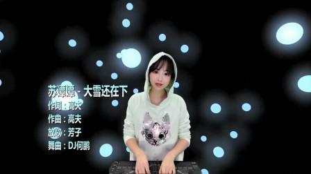 苏谭谭-大雪还在下(DJ何鹏版)