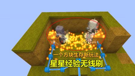 迷你世界:一个方块生存新玩法,星星经验无限刷,一次秒涨264颗