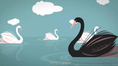【樊登读书】樊登小百科-黑天鹅事件