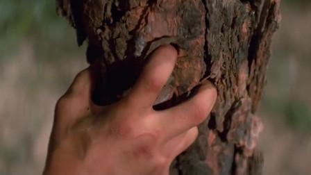 麦汉的鹰爪功已经练成,能把手指插进这么粗的树干里