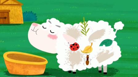 奇奇帮助小绵羊清理身上的虫子结果?宝宝巴士