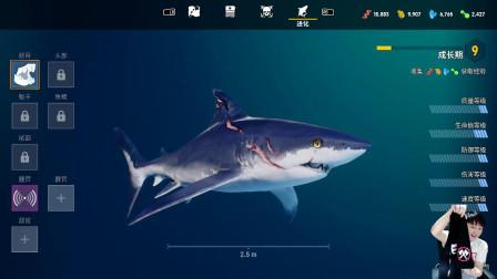 【小宇】4K画质 食人鲨Maneater 攻略解说全集06期