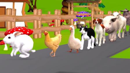 小兔子母鸡鸭子绕着农场转圈圈益智动画学颜色
