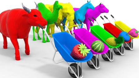 狮子老虎推着推车给农场动物送草莓西瓜益智动画学颜色
