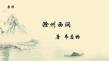 唐诗《滁州西涧》韦应物 春潮带雨晚来急,野渡无人舟自横