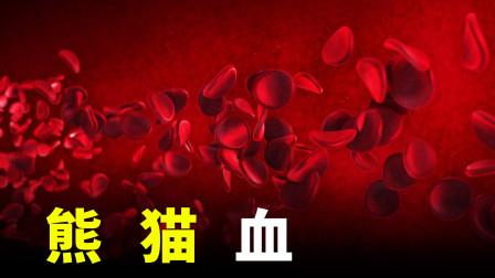 血型的5件事,什么是血型
