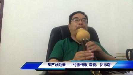 葫芦丝独奏一一竹楼情歌(F调)