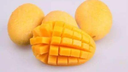 怀孕可以吃芒果吗