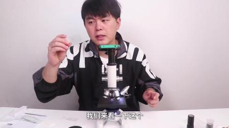 翔翔大作战:用显微镜实测,看看戴了一天的口罩到底有多脏