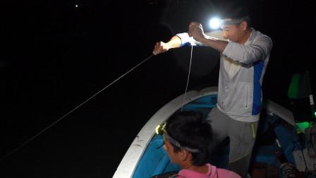 阿烽白鳗抓了几十斤活舱挤爆,三斤多的鳗鱼直冲人咬,阿鑫吓坏了