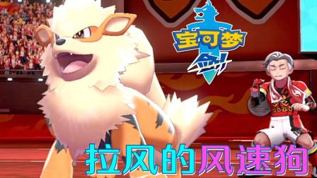 精灵宝可梦剑:火属性卡芜大叔 像狮子的风速狗好拉风