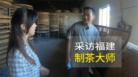 采访福建民间制茶大师,手工制茶20年,极品铁观音这样做出来!