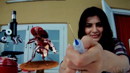 阿川:六分钟看完印度喜剧神片《功夫小蝇》  男主被后重生侠复仇  !