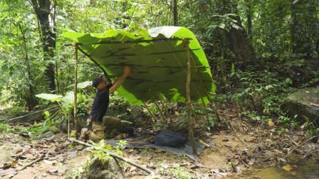 徒步丛林生存,用芭蕉叶搭建简易庇护所,网友:我也想试试