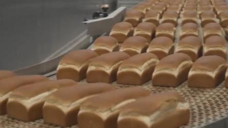 面包都是纯手工制作的?别傻了,看看工厂面包制作全过程!