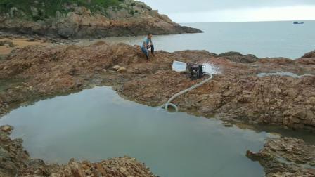 12米大坑堆集各种海鲜鱼群,抽干那一刻现场沸腾了,没人会想到猛货这么多