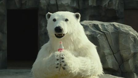 濒临倒闭的动物园来了一头北极熊,竟会抱着可乐喝,韩国爆笑喜剧