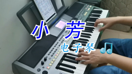 经典老歌《小芳》符正校电子琴演奏版,你喜欢这样的姑娘吗?