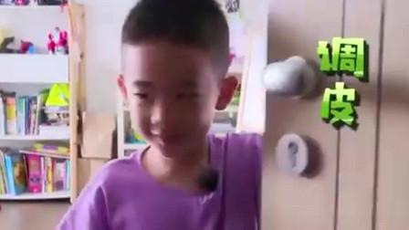 爸爸去哪儿:陈小春带上Jasper回归节目,家庭地位略有上升,采儿还被嫌弃了
