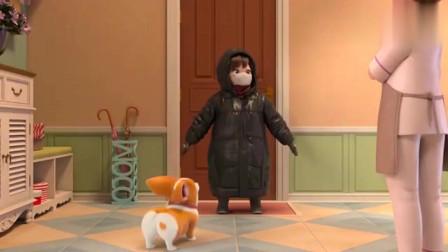短腿小柯基:有一种冷,叫做你妈觉得你冷!