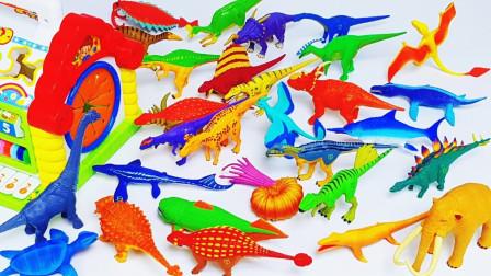 炫彩三角龙翼龙模型玩具展示