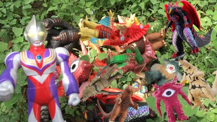 贝利亚破坏牢笼带怪兽们逃窜地球,被迪迦奥特曼发现捉回