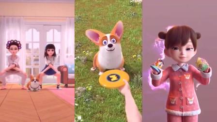 飞狗Moco:我为你准备的,狗狗可以吃的月饼!