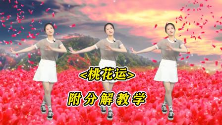 杨钰莹经典歌曲《桃花运》广场舞,歌甜舞美醉人心,好听极了!