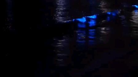 花鸟岛 荧光海滩 全球八大荧光海滩之一