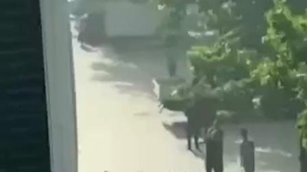 山东平度一女子跳楼轻生,一名施救者被砸倒住进ICU