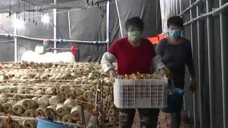 辽宁新闻 2020 阜新蒙古族自治县:坚持党建引领 决胜脱贫攻坚