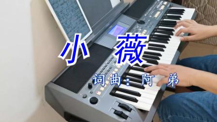 弹首电子琴《小薇》, 被网友说不是才找小芳吗真是花心大萝卜