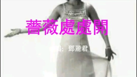 邓丽君  蔷薇蔷薇处处开(音画)