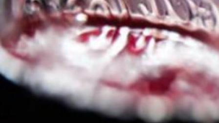 新西兰孕妇怀三胞胎,每日狂饮3公升可乐,活生生喝死一尸四命