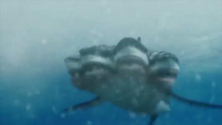 深海出现变异五头鲨鱼,疯狂攻击人类,大鲸鱼都不是对手