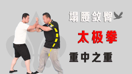 内家拳为何要塌腰敛臀?庞恒国老师讲解太极拳塌腰要领