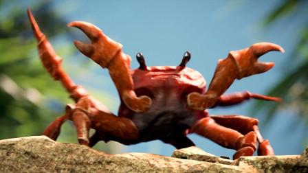 螃蟹钳子可以再生吗?网友:这么多年的螃蟹都白吃了!