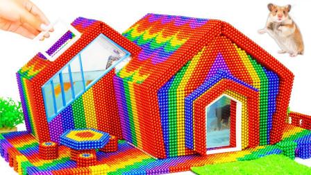 创意十足,达人用磁球建造彩色家庭水族馆和仓鼠乐园,真是多功能