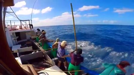 捕鱼:能经得起大鱼拉扯的,也只有这了,再贵的鱼竿都不行!