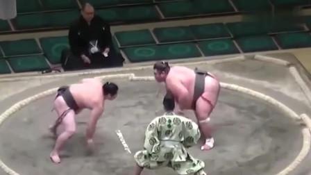真正的日本相扑比赛,太过瘾了,街霸里的招全都有