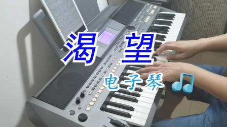 经典老歌《渴望》符正校电子琴演奏版,一首好听的电视剧主题曲