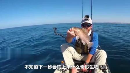 男子出海看见一个20吨家伙突然腾空起飞,一口咬住猎物,简直太壮观!