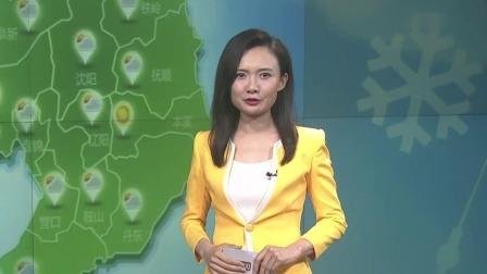 第一时间 辽宁卫视 2020 聚力家乡:辽宁好货帮你选