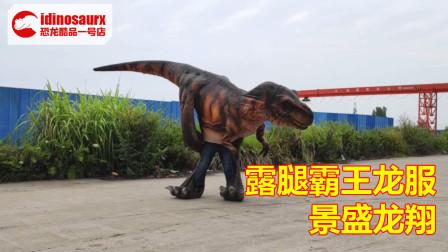 恐龙展道具服 - 网红景点霸王龙演出服