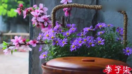 李子柒动手制作樱花茶,一身白裙坐在樱花树下,来一壶花茶好惬意