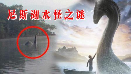 尼斯湖水怪是否真的存在?它是最善良的海怪,还是食人怪兽?