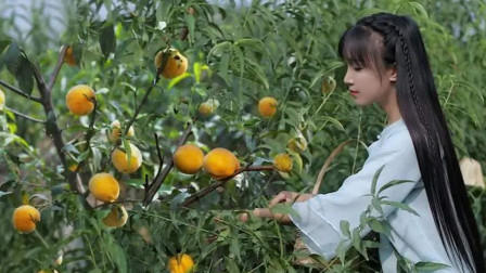 李子柒究竟在国外火成什么样了?一道黄桃罐头彻底征服中外网友!