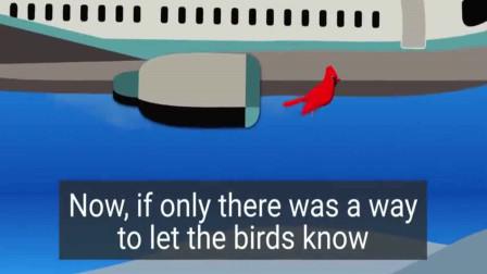 3D动画感受下,飞机起飞时遇鸟击的体验,不可小觑的力量!