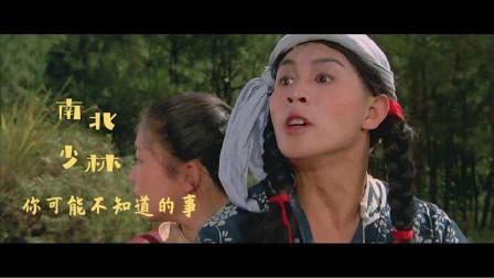 《南北少林》:李连杰片酬才3块钱一天,却导致了严重的脊椎错位
