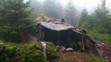 荒野求生,如何就地取材建造庇护所,你学会了吗?